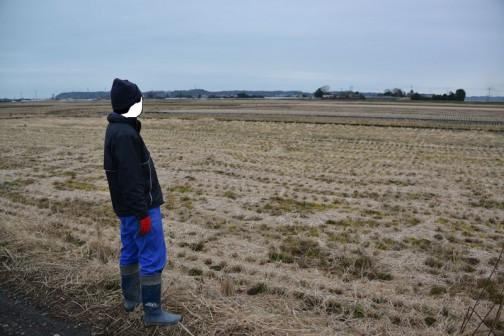 振り返って農地の点検。わずかな時間でまとめて撮ってしまいます。