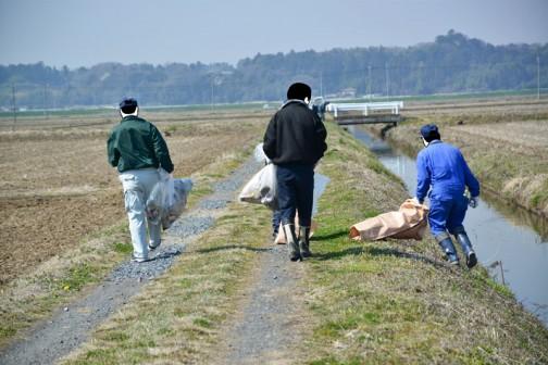 施設又はテーマとして「水路」、活動項目としては「地域環境の整備」または「施設の定期的な巡回点検・清掃」あたりに分類されるのではないかと思いますが、まあ、ゴミ拾いです。