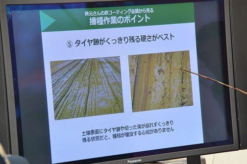 播種作業のポイント 5.タイヤ跡がくっきり残る硬さがベスト 土壌表面にタイヤ跡や切った溝が崩れずくっきり残る状態だと、種もみが埋没する心配がありません。
