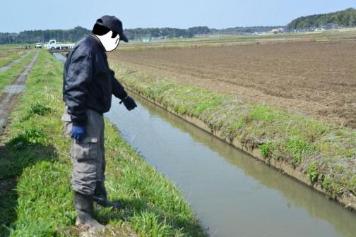 水路の点検。