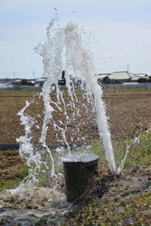水圧を掛けたらあちこちで水が吹き出しているのが見えました。ここは強く蹴られたのでしょう。土の中でパイプが折れているようです。関係のないところから水が出ています。