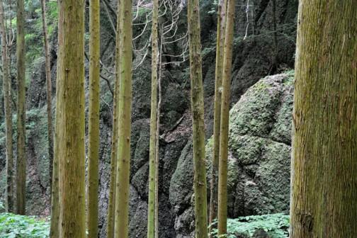 巨大な恐竜の肌のような、メロンパンのような、そんな岩が遥か高くまである、不思議な山です。