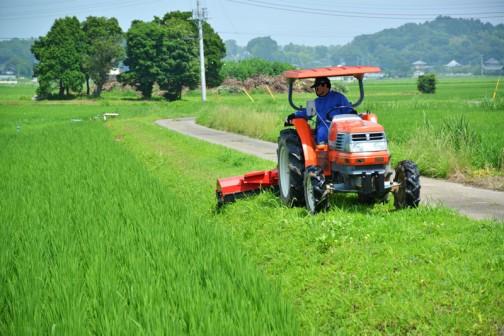 7/10 農道 路肩・法面の草刈り、もしくは農用地 畦畔・農用地法面・防風林等の草刈り・・・とカテゴライズされる草刈でしょうか・・・
