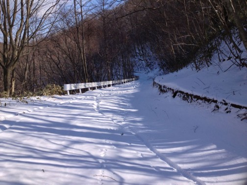 2013年は降らなかったのかなあ・・・記録がありません。そのかわり、2/11に山に走りにいっています。