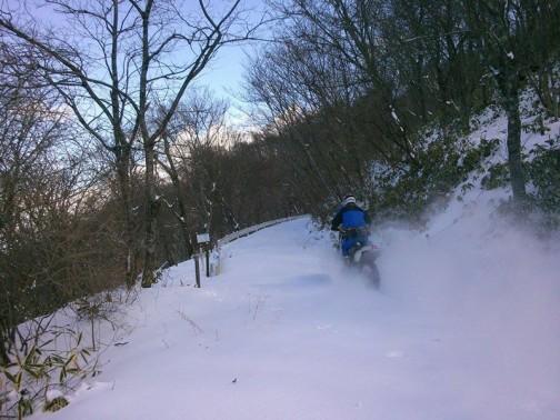 去年も積もるような雪は降らなかったんですね・・・やっぱり2/1にお山に走りにいっています。