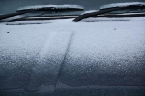 さんざん雨が降ったあとなんで、雪もうまいこと積もりません。やっぱり、パリパリに乾燥したところへフワフワの雪が降らないと効率よく積もりません。