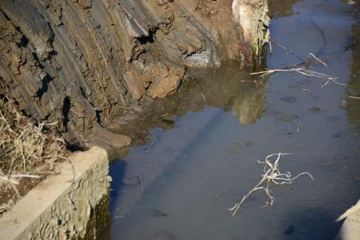 きれいになりました。水を通して下の段の上面が見えています。