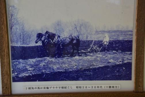 2頭曳きの馬に双輪プラウで畑起こし 昭和20〜30年代(十勝地方)
