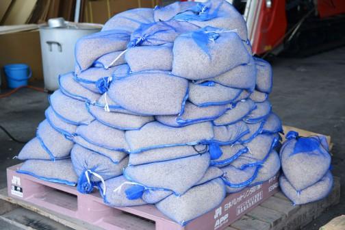 こちらは唐箕で選別した飼料稲の種籾です。こちらは「夢あおば」という品種です。