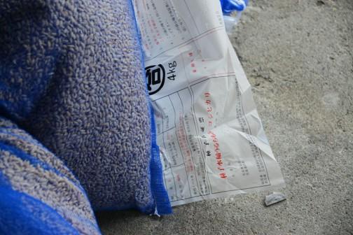 米袋をあけると4キロに小分けした種籾袋が入っています。