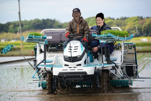 飼料稲の田植2016