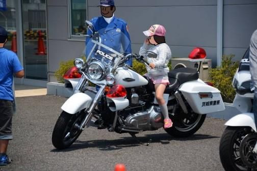 茨城県警にはハーレーの白バイがあるみたいだ。
