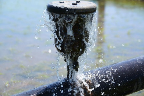 その空気弁から水がドウドウと流れています。おまわりさんの喉のところにコックがあって、水を止めることもできるみたいです。