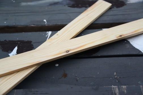 まずはそこらへんに落ちていたサオブチを縦に薄く切ります。これで標本箱の枠を作るんです。