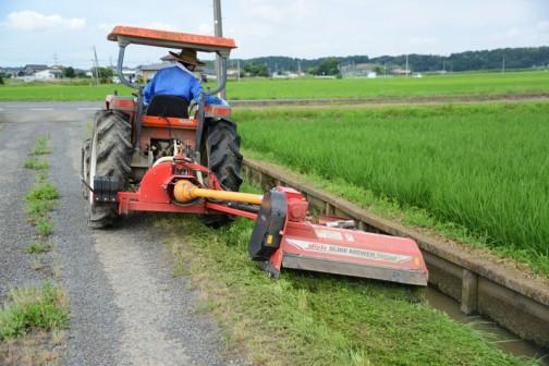 そこで機械の登場というわけです。大勢での活動が終わった後も何日か機械で草を刈ります。