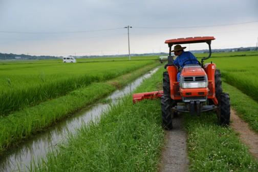 7月28日のスライドモア草刈り