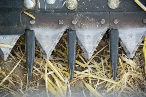 これがバリカンの刃。クシのような部品と組合わせて刈取るものが逃げないよう、細かい工夫が施されているんですね。