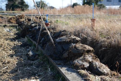 その土がスコップの形のまま、土嚢のように積み上がっていました。