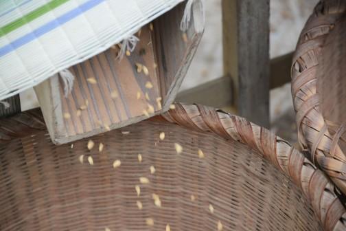 精緻な工作 今年で84歳になる木製の唐箕(とうみ)です
