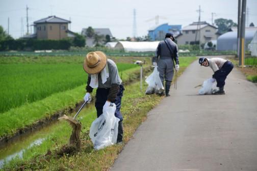 やはり草が生えてくる・・・というのが大きいのだと思います。コンクリートで全て覆われていれば、ゴミはずっとそこにあって目に付きますけど、草で覆われてしまば「無いこと」になってしまいますからね・・・