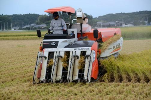 食用米の面積が減っているということは、この機械の出番も年々減っているということなのでしょう。
