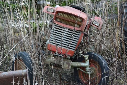 ヤンマーのYM260です。雑草に囲まれていますが、まだ生命力を内に秘めている感じ。ちっとも煤けていなくて、ちょっといじっただけで動き出しそうです。