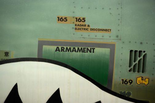 日頃武器と名のつくものから遠ざかっているので、armamentという言葉には、やはりドキッとしますよね。