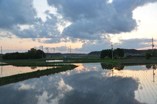 今日はちょっと出かけるので、短かめに・・・田んぼに水が入り、一年で一番いい季節になりました。このように空を映していた田んぼもイネの成長につれ、反射面が少なくなってやがて緑に変わるんですよね!