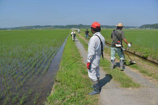 こちらは農道の点検の写真。心の中では「道が痩せてきちゃったなあ。砂利を補充しなくちゃなあ」などと思っています。