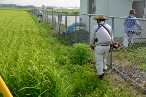 その後、揚水機場回りの草刈り。