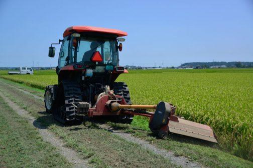 前日にスライドモアで大部分を刈ってあるので、スライドモアが届かないところだけを手作業で刈ればよいことになっています。
