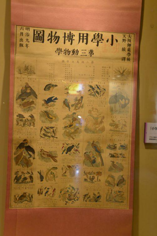 大阪師範学校・・・小学用博物・・・園?(なんて読むのだろう・・・)第二級鳥之等類・・・何のことかわかりません。鳥の細かい絵がずらっと並んでいます。昔の小学生、ずいぶん難しいことを学んでいたのですね。