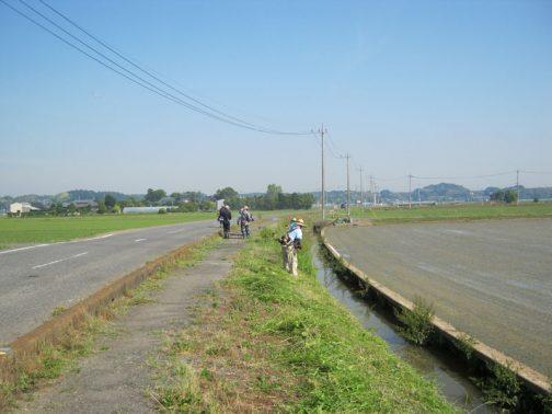 農道の草刈りの写真もお願いしていたのですが、どうも水路がメインの作業だったようです。水路際過ぎてスライドモアで刈れなかった部分を手刈りしています。