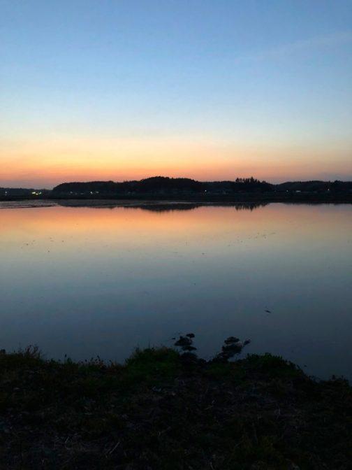 島地区のまわりは水不足が心配されましたが、昨日今日の雨もあってかほとんどの田んぼに水が入り、まわりは海のようです。辺り一面の田鏡・・・僕が1年で一番好きな季節の始まりです。