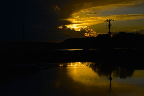 僕が一番好きなのは夕焼け空を映す田んぼ・・・夕暮れ時の空は刻一刻と変化して、その様子は逐一田んぼに投影されます。