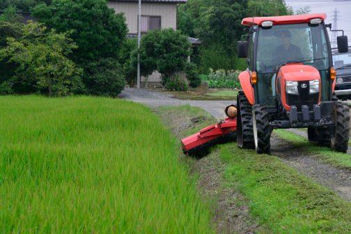 農家の人たちは普段どこかへ勤めに行っている人が多いです。勤めが休みの日に草刈りや農家の用事をするので、結局休みナシ・・・ダブルワークは辛いっすねぇ・・・