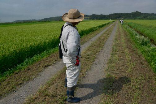 ついでにといっては何ですが、点検もしています。農道の点検。