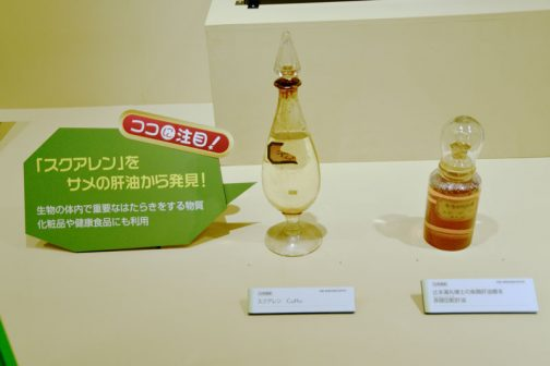 左、スクアレン C30H50 右、辻本満丸博士の魚類肝油標本 赤隠田鮫肝油