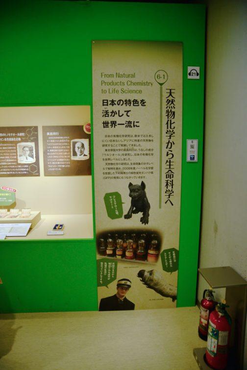 天然物化学から生命科学へ 日本の特色を活かして世界一流に 日本の有機化学研究は、欧米では入手しにくい日本ないしアジアに特産の天然物を研究することで発展してきました。  東北帝国大学の眞島利行は、うるしの成分「ウルシオール」を研究し、日本の有機化学を世界レベルにしました。  天然物化学の研究は、生命現象の分子レベルで解明進め、2008年度ノーベル化学賞を受賞した下村脩博士の緑色蛍光タンパク質(GFP)の発見にもつながっていきます。 とあります。日本の有機化学研究が、欧米では入手しにくいという部分がキモの「日本ないしアジアに特産の天然物を研究することで発展してきた」というところ、知りませんでした。オリジナリティというか、他の人が手を付けていず、しかも身近なテーマを選んだというところに勝因があったのですね。これは有機化学研究に限らず、いろいろなことに言えますよね。