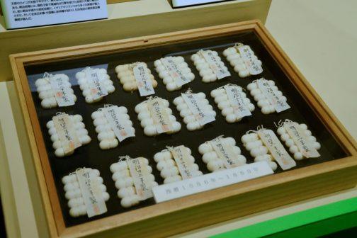 モナカが並んでいるみたいですが、繭の標本です。 繭標本 天然のカイコを数千年かけて、繭を取るために品種改良したものがカイコである。明治初期には、微粒子病で壊滅的な打撃を受けた欧州に大量に輸出された。逆に明治中期から昭和初期には、イタリアやフランスから多くの原種が輸入され、在来日本種・中国産に欧州種が加わり、日本独自の優良品種開発が進んだ。 とあります。