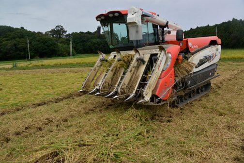 詰まった稲を取り除き、またコンバインは動き始めました。農機の作業中は常に野外。工具を持参していなければ家に帰らなくてはなりません。工具、大事ですね。
