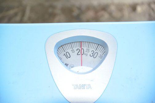 気になる重さは21キロ弱。ちょっと体重が気になってきました。