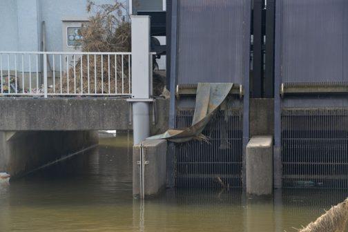 そういえばその排水機場のゴミ揚げマシン、トタンが引っ掛っていました。