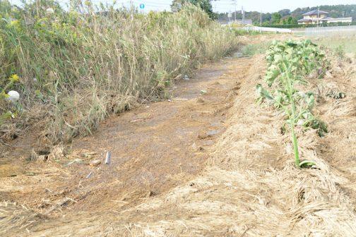 その小排水路