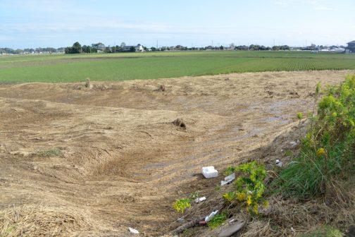 同じ場所を角度を変えてみています。奥が大排水路。そして手前に小敗水路が来ているんですが・・・