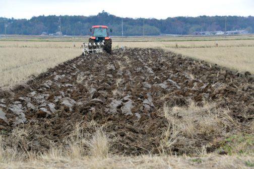 ロータリー作業と違い、スピードが速いので短い時間で何枚も作業をしているのですが、見ていると田んぼによって土の返り具合が違います。田んぼの乾燥度合いや土質によって変わってくるみたいで