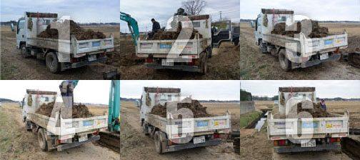 昨日は道に面していない田んぼの稲わらを、トラクター+ダンプキャリア2台で道端まで出し、ダンプに積んで搬出しました。ダンプは6台。午前中で終りました。