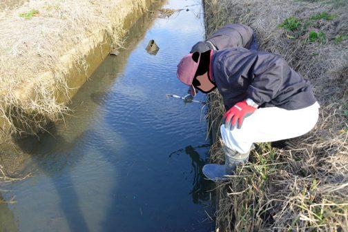 排水路の上流側で少しも水の抜けが良くなるような作業をしているのだそうです。