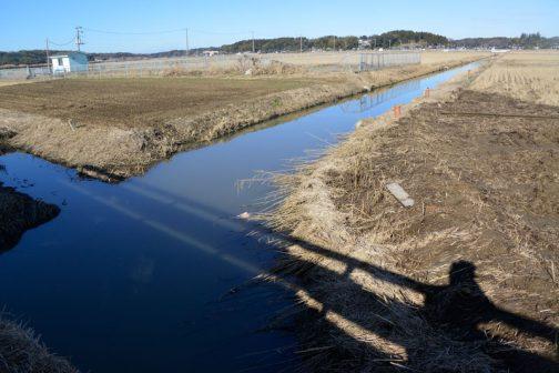 地面が見えています。水路の向こう側は10/26に搬出したSさんの畑です。