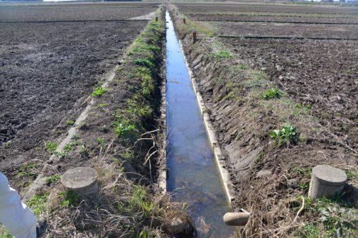 土砂で埋まり気味ですが、浚渫は来年度にやる予定です。